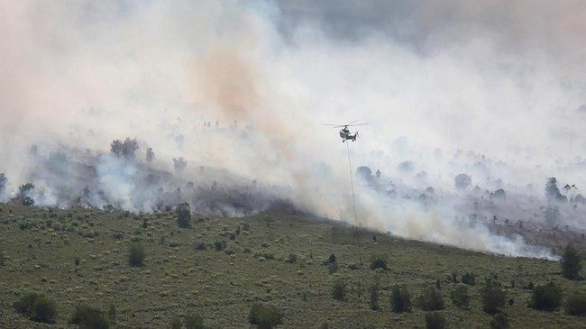 Akibat Kebakaran Hutan, Kota Rengat di Riau Dikepung Asap