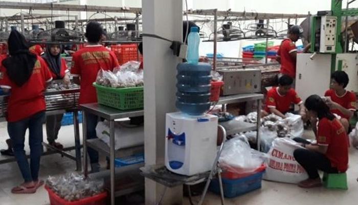 Pemkot Kota Depok Perintahkan Pabrik Bakso di Cimanggis Ditutup