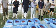 Di Jepang, Menonton Pertunjukan Ikan Paus Saat Memburunya Jadi Bisnis Wisata Yang Menguntungkan