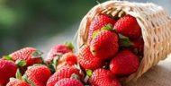 Ketahuilah Manfaat Strawberry Untuk Tubuh